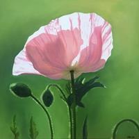 Daniela-Boeker-Pflanzen-Blumen-Natur-Diverse-Moderne-Fotorealismus