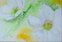 Michaela-Steinacher-Natur-Diverse-Pflanzen-Blumen-Gegenwartskunst-Gegenwartskunst