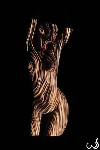 Wolfgang Schroffner, Body & Lines, Akt/Erotik: Akt Frau, Menschen: Frau, Konzeptkunst