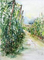 Gertraud-Wagner-Diverse-Landschaften