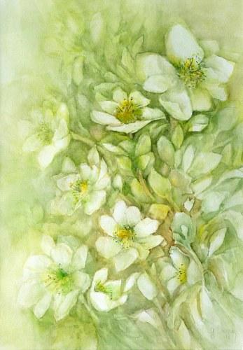 Gertraud Wagner, Christrosen, Pflanzen: Blumen