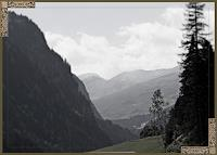 Klaas-Kriegeris-Natur-Wald