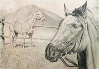 arthoss-Tiere-Land-Fantasie-Neuzeit-Realismus