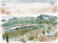 Sebastian-Burckhardt-Landschaft-Huegel-Diverse-Pflanzen-Gegenwartskunst-New-Image-Painting