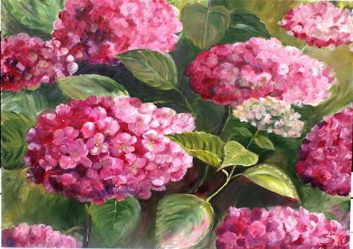 Anett Struensee, Hortensie, Pflanzen: Blumen, Naturalismus