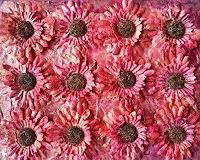 Jana Boettcher, Red Flowers