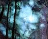 R. Horn, Lichtspiele