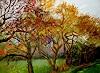 Reiner Dr. med. Jesse, Verwilderte Apfelbäume im Herbst