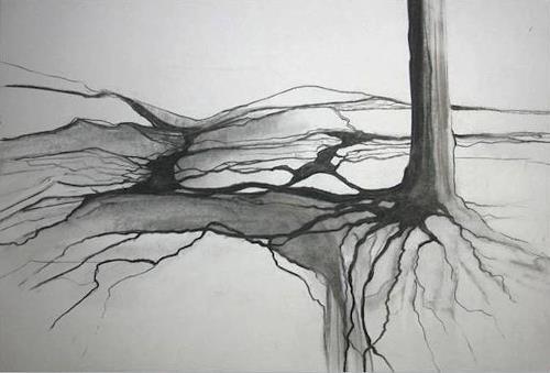 Helga Matisovits, Verwurzelt, Pflanzen: Bäume, Diverse Landschaften