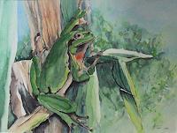 Helga-MATISOVITS-Natur-Tiere