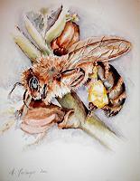 Helga-MATISOVITS-Tiere-Tiere-Luft