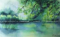Helga-MATISOVITS-Natur-Wasser-Natur-Wald