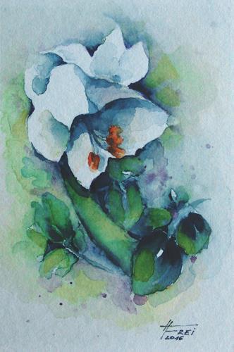 Helga Matisovits, Weiße Lilie, Pflanzen, Pflanzen: Blumen