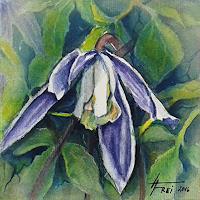 Helga-MATISOVITS-Natur-Wald-Pflanzen-Blumen
