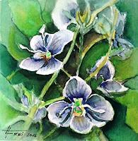 Helga-MATISOVITS-Landschaft-Pflanzen-Blumen