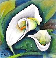 Helga-MATISOVITS-Natur-Wasser-Pflanzen-Blumen