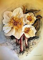 Helga-MATISOVITS-Pflanzen-Blumen-Landschaft-Winter