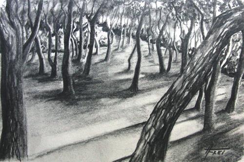 Helga Matisovits, Porto Selvaggio, Landschaft, Pflanzen: Bäume, Abstrakte Kunst