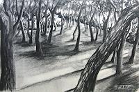 Helga-MATISOVITS-Landschaft-Pflanzen-Baeume