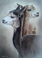 Helga-MATISOVITS-Tiere-Natur-Moderne-Abstrakte-Kunst