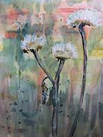 Sabine-Brandenburg-Pflanzen-Blumen-Landschaft-Sommer