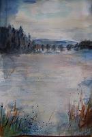 Sabine-Brandenburg-Natur-Wald-Landschaft-Ebene-Gegenwartskunst-Gegenwartskunst