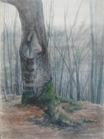 Eugen-Blank-Diverse-Landschaften