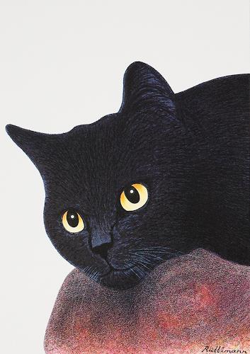 Hans Rüttimann, Schwarzes Katzenporträt, Tiere: Land, Realismus, Expressionismus