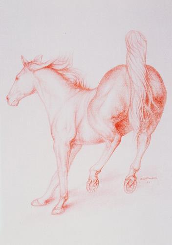 Hans Rüttimann, Pferd im Sprung, Tiere: Land, Realismus