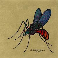 H. Rüttimann, Farbenprächtige Mücke