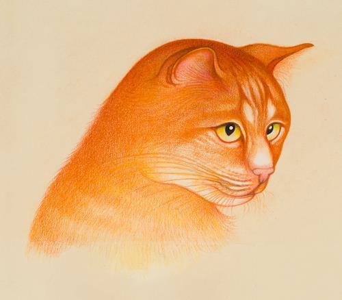 Hans Rüttimann, Katzenporträt, Tiere: Land, Realismus