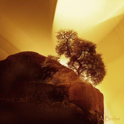 Anke Brehm, Der Baum am Fels, Fantasie, Landschaft, Fotorealismus, Expressionismus