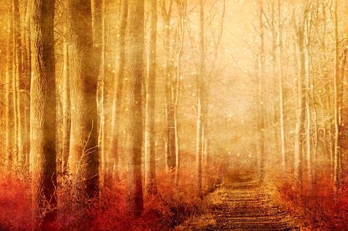 Heike Hultsch, Der zauberhafte Elfenwald, Mythologie, Natur: Erde, Romantik, Expressionismus