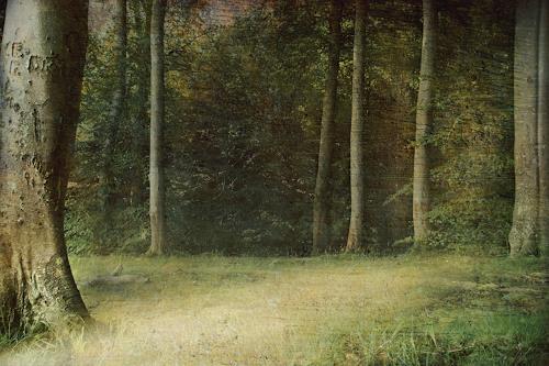 Heike Hultsch, Märchenwald, Diverse Landschaften, Landschaft: Sommer, Fotorealismus, Expressionismus