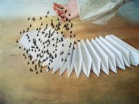 Heike Hultsch, Die Vögel