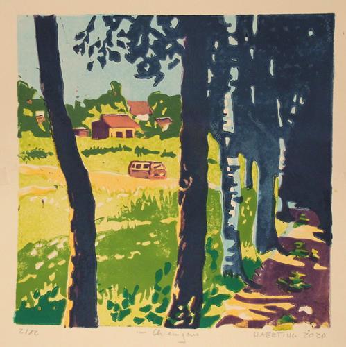 Matthias Haerting, im Chiemgau, Landschaft: Sommer, Landschaft: Hügel, Moderne