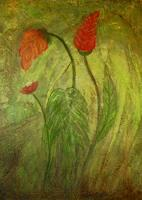 Katharina-Frei-Boos-Pflanzen-Blumen-Natur-Diverse