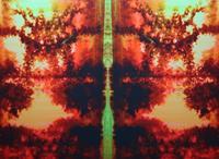 Hanna Rheinz, Narcissus Dreaming