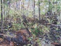 Barbara-Schauss-1-Landschaft-Natur-Wald-Gegenwartskunst-Gegenwartskunst