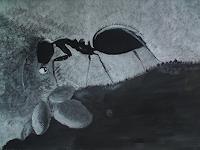 Christine-Erm-Tiere-Tiere-Land