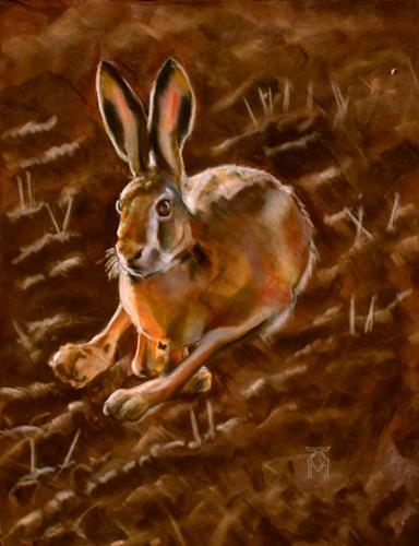 Martin Künne, Hase, Tiere: Land, Tiere: Land, Gegenwartskunst