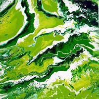 S. Dürr, Amazonas