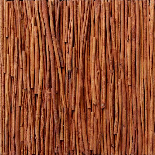 Friedhelm Raffel, Cinnamomum verum, Pflanzen, Impressionismus, Abstrakter Expressionismus