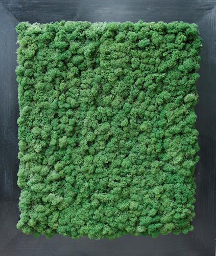 Friedhelm Raffel, Moosteppich, Pflanzen, Abstrakte Kunst, Expressionismus