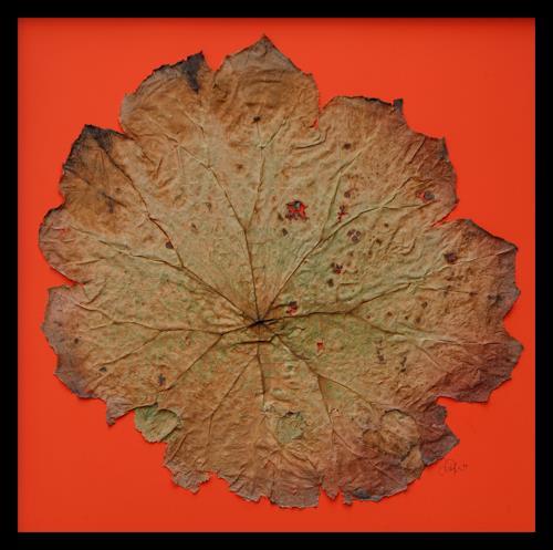 Friedhelm Raffel, Blatt-Trilogie I, Pflanzen, Abstrakte Kunst