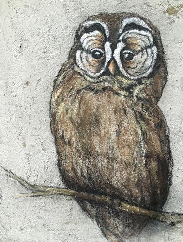 Anita Hörskens, Little Owl, Jagd, Tiere: Luft, Gegenwartskunst