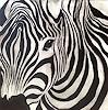 A. Hörskens, Zebra