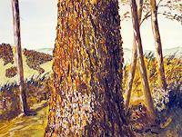 Kay-Natur-Wald-Landschaft-Huegel-Gegenwartskunst-Gegenwartskunst