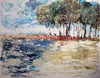 Sabine-Mueller-Natur-Wald-Natur-Wasser