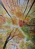 Susanne Geyer, Baumkronen im Herbst